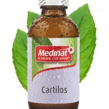 Cartilos